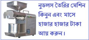 Buy noodle making machine earn money