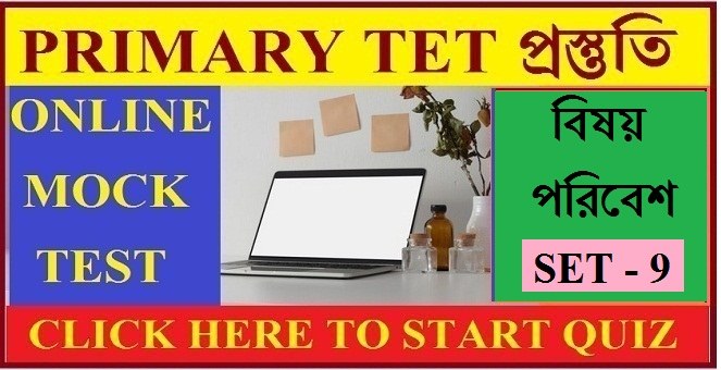 click below start quiz button and improve yourself for upcoming primary tet