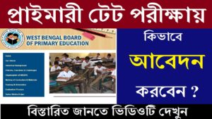 Primary tet Exam Apply